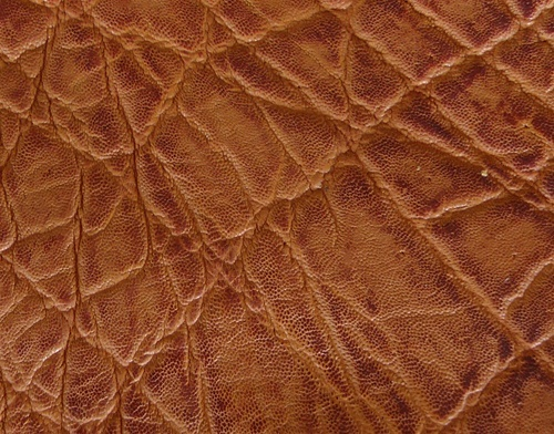 CHECK out our NEW and UPDATED Exotic Leather for Holsters and Accessories-Hipo, Giraffe, Caiman... FAQS — MTR Custom Leather