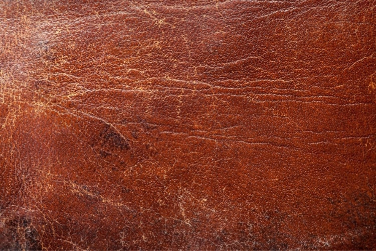 Damaged leather is commonly caused by exposure to sunlight.